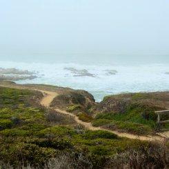 Bean Hollow coastal hike