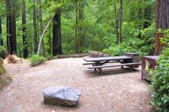 Huckleberry campground, Big Basin