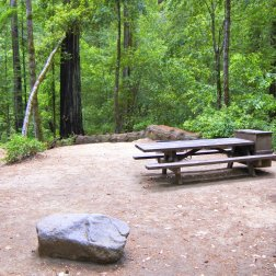 Huckleberry campground, Big Basin