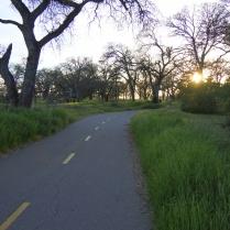 Jedediah Smith Trail
